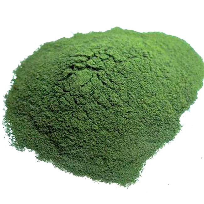 Χλωρέλλα (Chlorella)